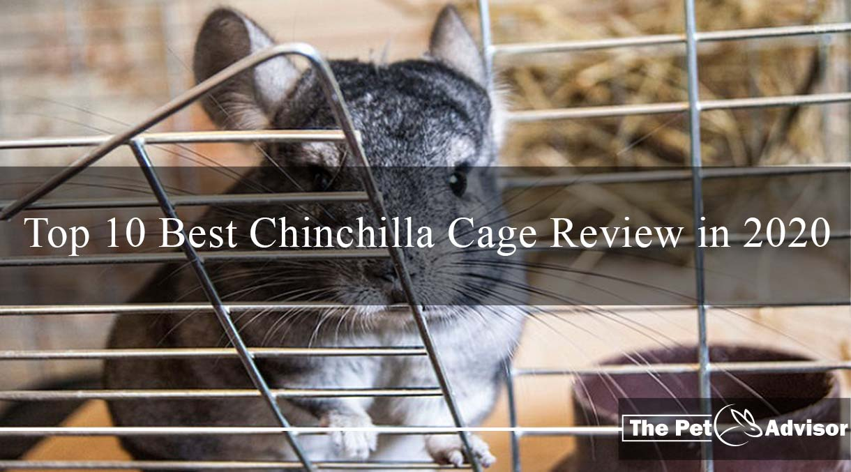 Top 10 Best Chinchilla Cage Review In 2020 And Buying Guide With Faq It takes care of cleaning and ensures easy access to the mice. best chinchilla cage review in 2020