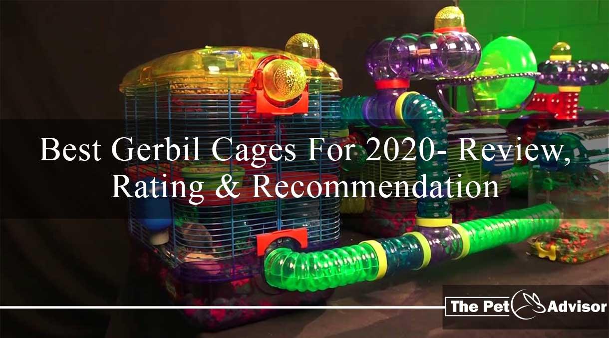 Best Gerbil Cage