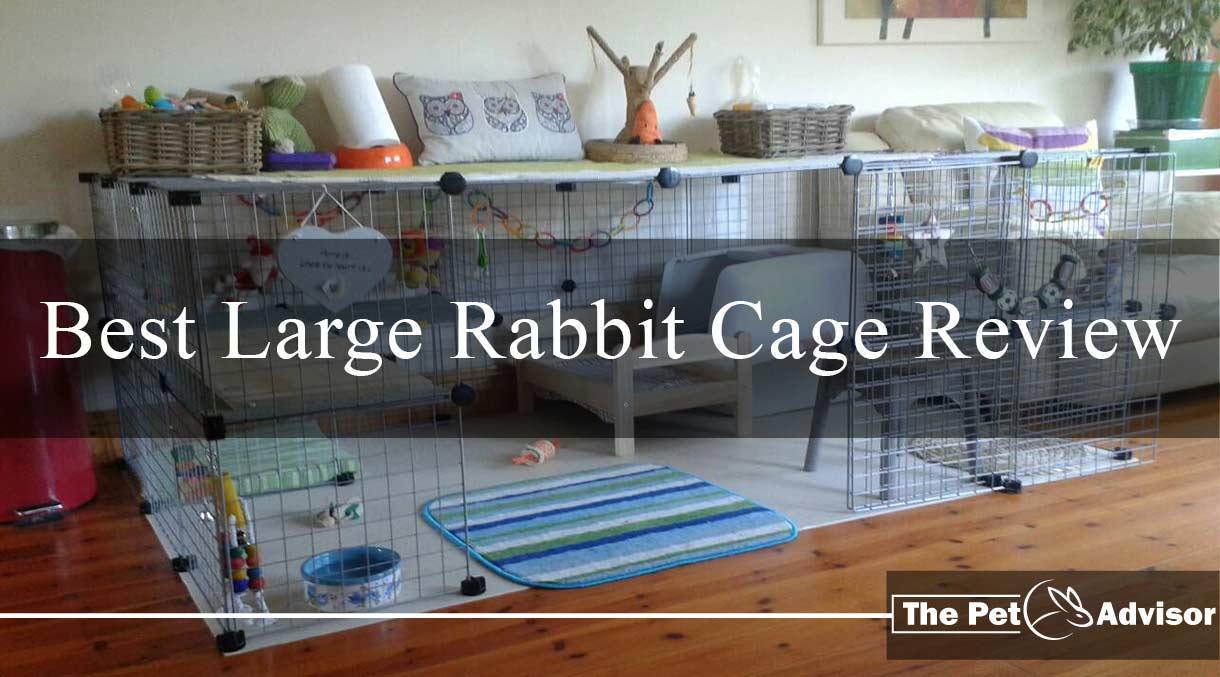Best Large Rabbit Cage