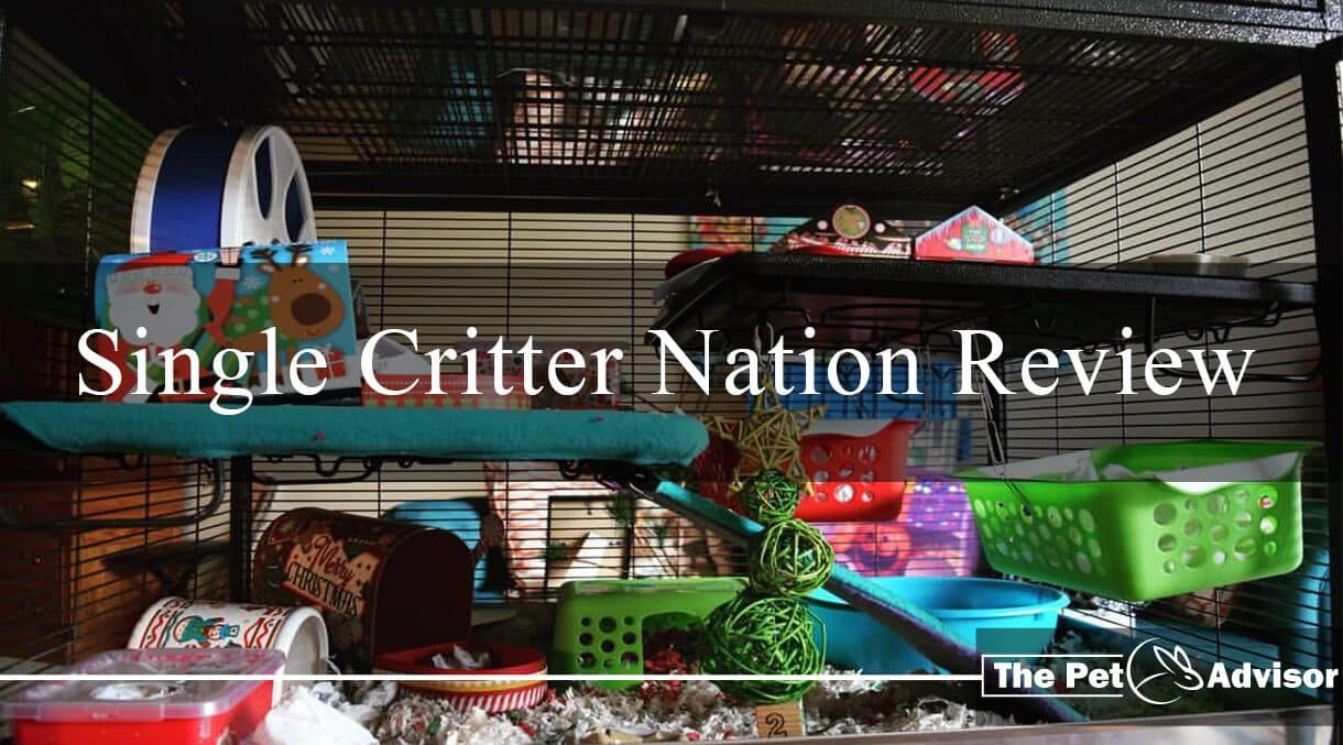 single critter nation