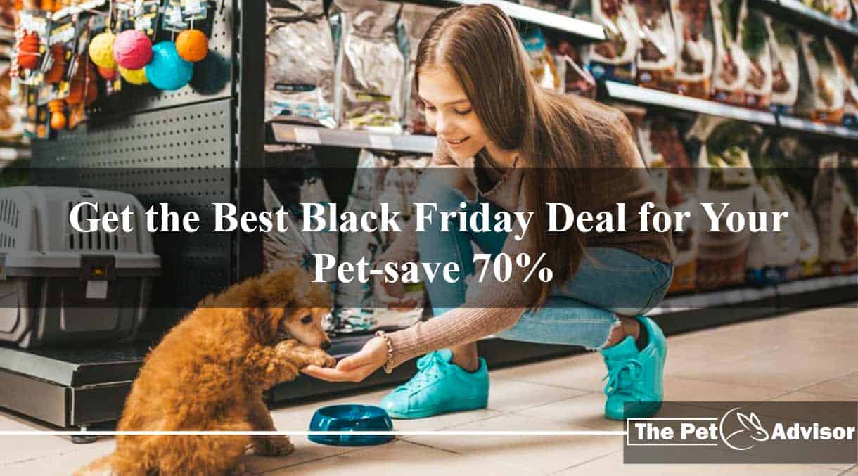 Best Black Friday Deal for Your pet