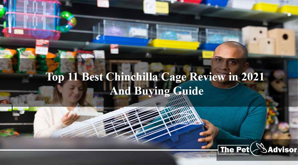 Best Chinchilla Cage