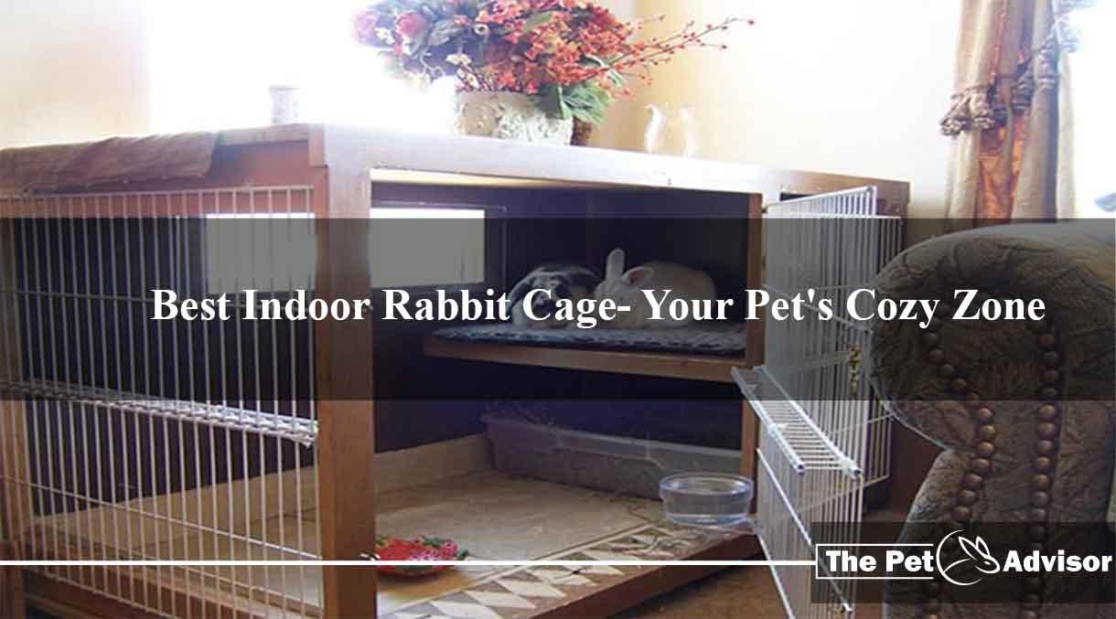 Best-Indoor-Rabbit-Cage